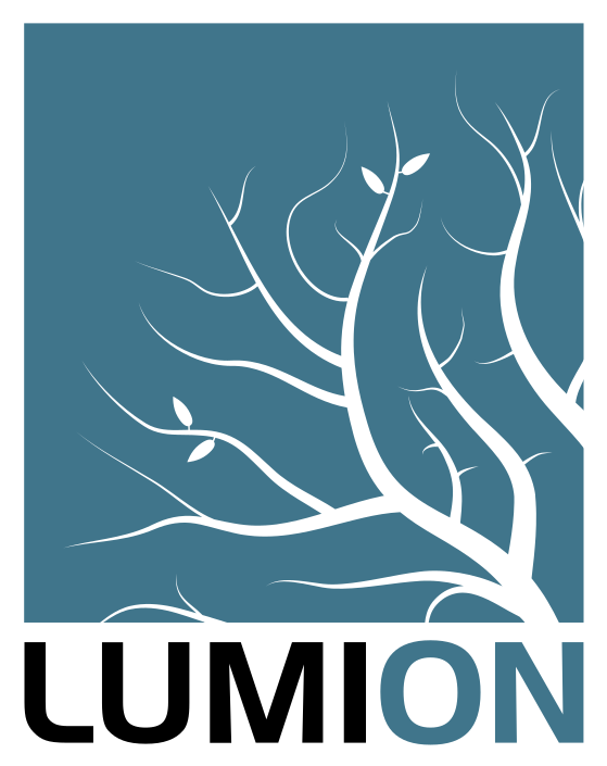 Lumion.png